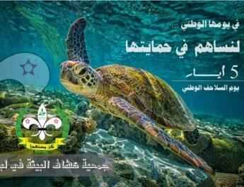 """كشافة البيئة """"اليوم الوطني للسلاحف البحرية مناسبة للتوعية البيئية"""""""